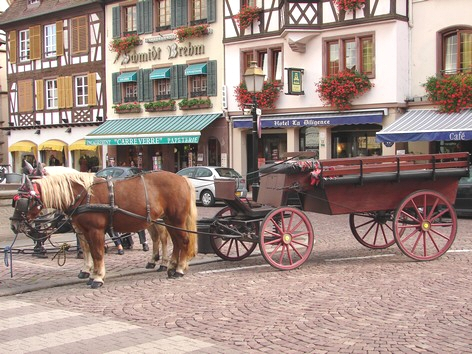 Obernai - Place du marché - Photo Bertheville - Gite en Alsace